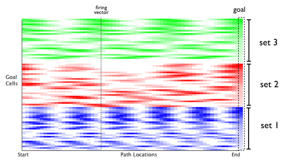 Three modules, coded by color. Although there is wavelike rhythmicity to in some groups, the three simultaneously reach high correlation at the goal.