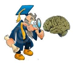 examing brain