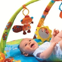 infant play gym 2