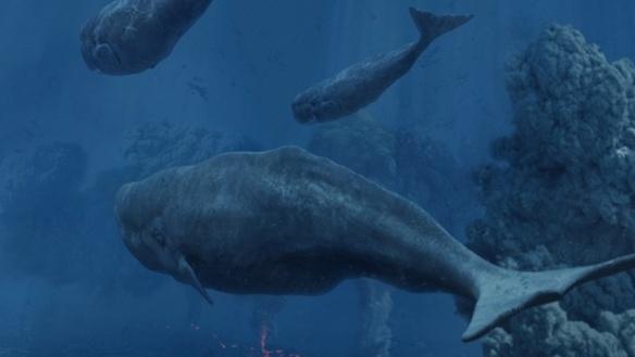 whale deep v1